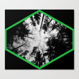 Grey forest Canvas Print