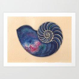 Untitled Nautilus Art Print