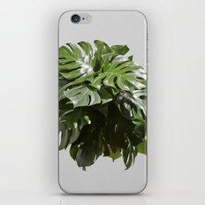 Tropical leaves monstera iPhone Skin