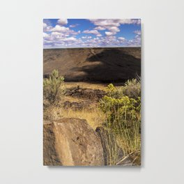 Desert Valley Metal Print