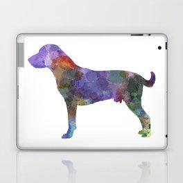 Harrier in watercolor Laptop & iPad Skin