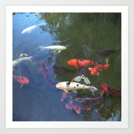 The Fishes Art Print