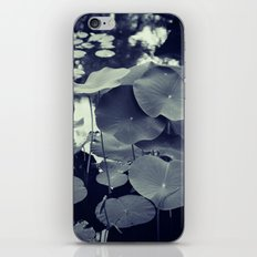 The Pond iPhone & iPod Skin