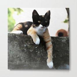 Just Chillin Tricolor Cat Metal Print