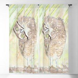 "Watercolor Painting of Picture ""Vizcachera Owl"" Blackout Curtain"