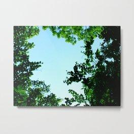 green border Metal Print