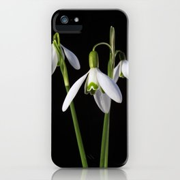 Spring Springs Eternal iPhone Case