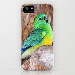 Graceful Parakeet iPhone Case