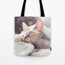 SPHYNX KITTEN IV Tote Bag