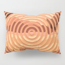 TOPOGRAPHY 2017-000 Pillow Sham