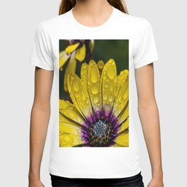 Droplets of Color T-shirt