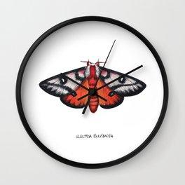 Electra Buckmoth  (Hemileuca electra) Wall Clock
