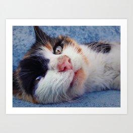 striped kitten laying Art Print