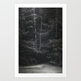 Path into the trees Art Print