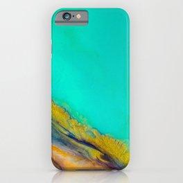 Sapphire Coast iPhone Case