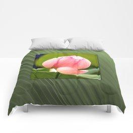 Lotus dream/Lotustraum Comforters