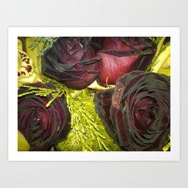 Purple Flowers 2 Art Print
