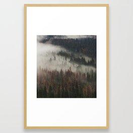 Foggy Pines | Yosemite, California | John Hill Photography Framed Art Print