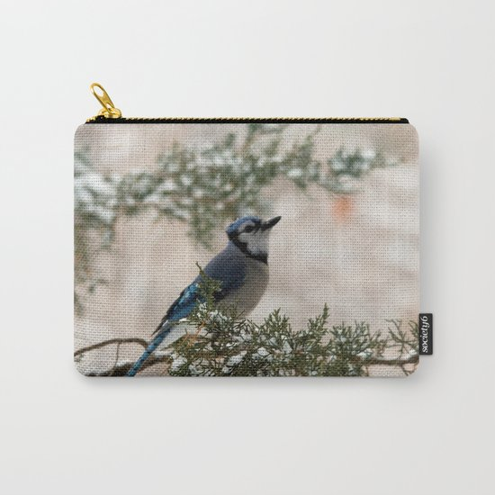 Look to the Sky (Blue Jay) Carry-All Pouch