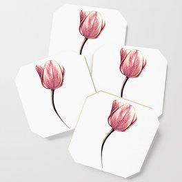 A single rose gold tulip Coaster
