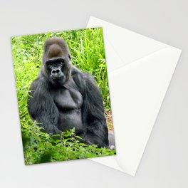 Pertinax Stationery Cards