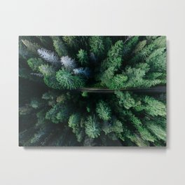 forest, aerial view Metal Print