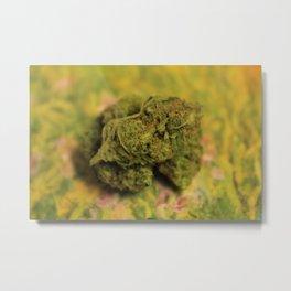 Cannabis XXIX Metal Print