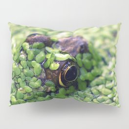 Feeling Froggy Pillow Sham