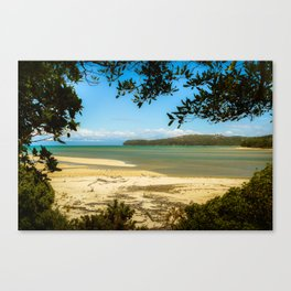 framed Abel Tasman beach Canvas Print