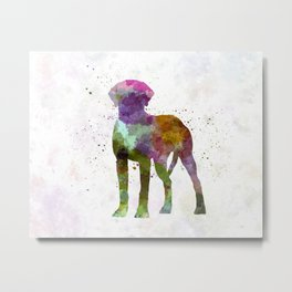 Rhodesian Ridgeback in watercolor Metal Print