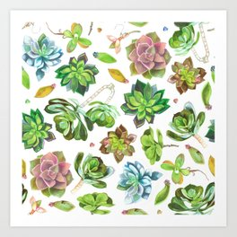 Colored pencil succulents Art Print