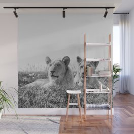 Lion Photography | Cubs | Twins | Love | Animal Wall Mural