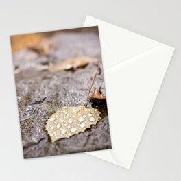 Scenes of Fall Stationery Cards