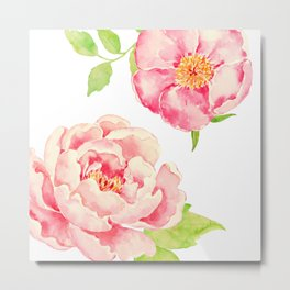 Two Pink Peonies on White Metal Print