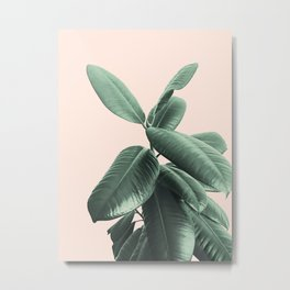 Ficus Elastica #25 #SummerVibes #foliage #decor #art #society6 Metal Print
