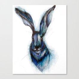 Blue Hare Canvas Print