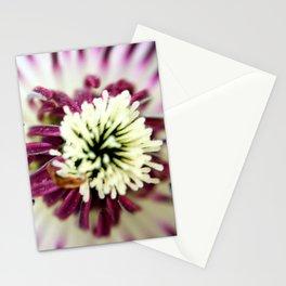 Old Westbury Flower Stationery Cards