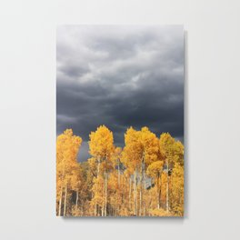 Golden Aspens and an Impending Storm Metal Print
