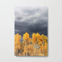 Golden Aspens and an Impending Storm Metal Print