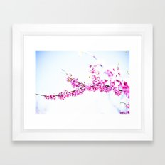 Spring has come 3 Framed Art Print