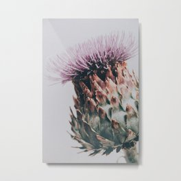 Artichoke Flower Metal Print