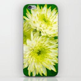 Chrysanthemums on Green iPhone Skin