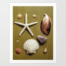 Nature Board Art Print