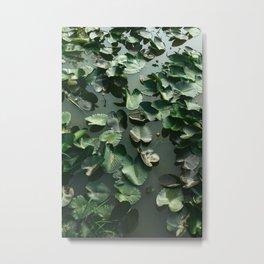 Water Lilies III Metal Print