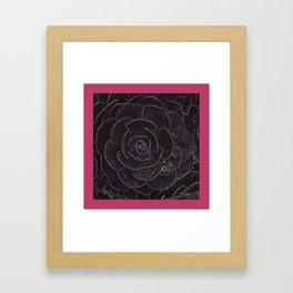 Succulent  DPG150521a Framed Art Print