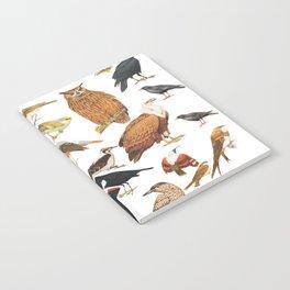 Birds Collection Notebook