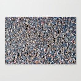 Asphalt and pebbles texture Canvas Print