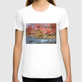Fall Along the Guadalupe T-shirt