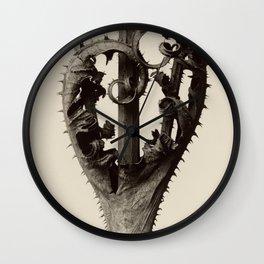 Karl Blossfeldt - Dipsacus laciniatus Wall Clock