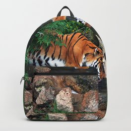 Drinking Backpack